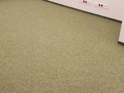 Wykładziny dywanowe 24