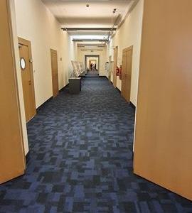 Wykładziny dywanowe 30